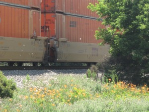 By the CSX tracks