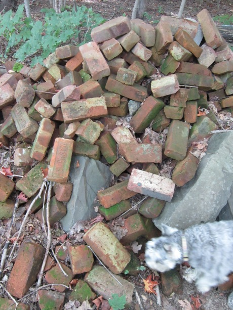Red clay bricks in garden