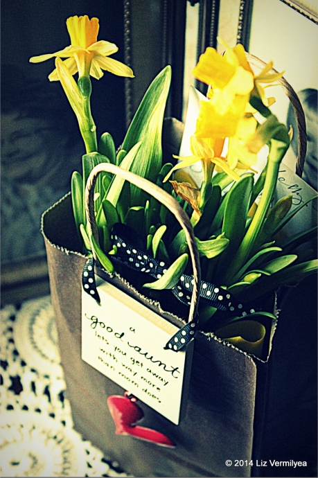 Daffodil gift. HudsonValleyGardens.us