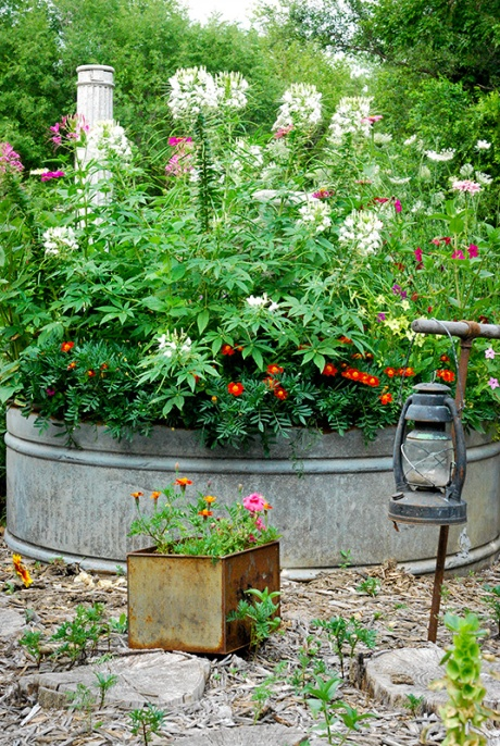 vintage oil lantern and galvanized tank used as flower bed