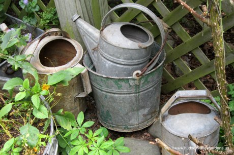 vintage galvanized watering cans and buckets