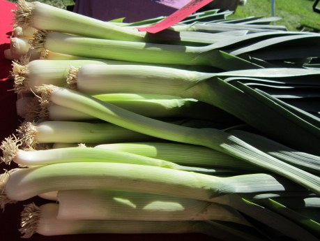 Fresh leeks by Earthy Mirth Farm