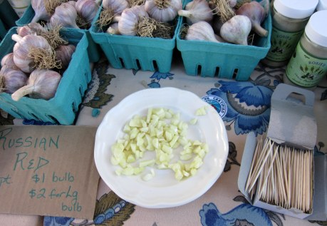 garlic samples to taste by Six Cycles Farm at the Hudson Valley Garlic Festival