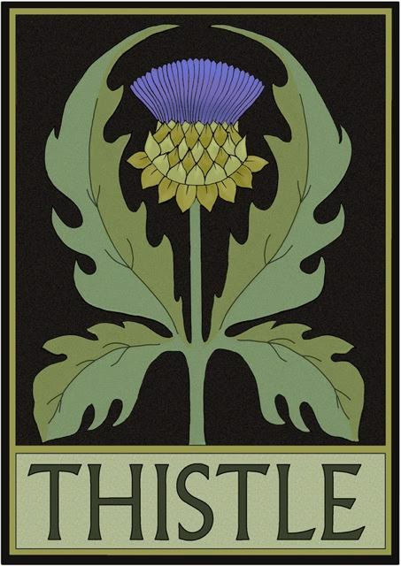 Thistle by Lynne and Richie Bittner, Wildflower Graphics