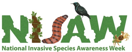 The logo for the National Invasive Species Awareness Week. A design where the letters NISAW are made out of pictures of plants, insects and birds